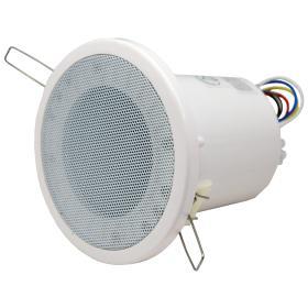 CSL 310T - Diffusore con trasformatore 10w
