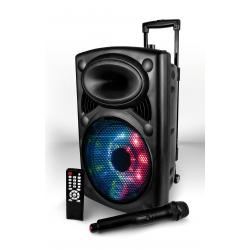 MY DJ PICKY 10 - Box a led amplificato 100W