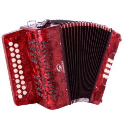 ORGANETTO SOUNDSATION SAC-2108GC-RD ROSSO SOL/DO (cambio registri ai bassi)