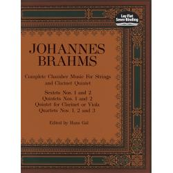 Brahms - complete chamber music for string and clarinet quintet